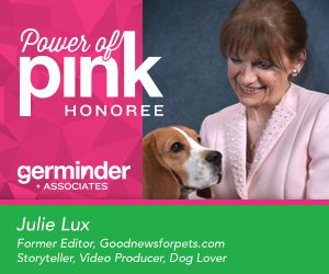 Julie Lux Power of Pink Art